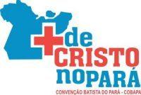 cropped-logo-cobapa-e1472158093702.jpg