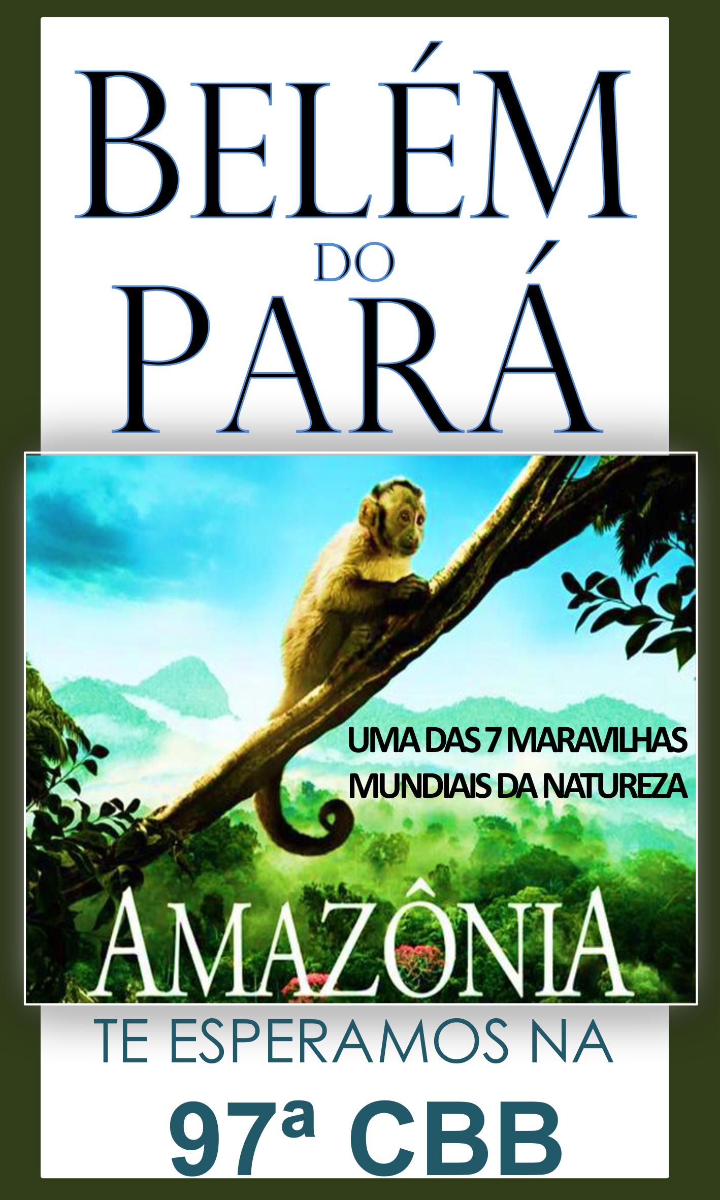 cbb_amazonia_2017