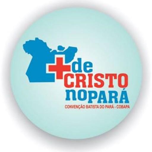 cropped-logo-cobaa.jpg